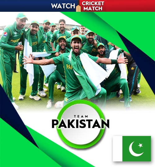 Pakistan cricket team poster png banner